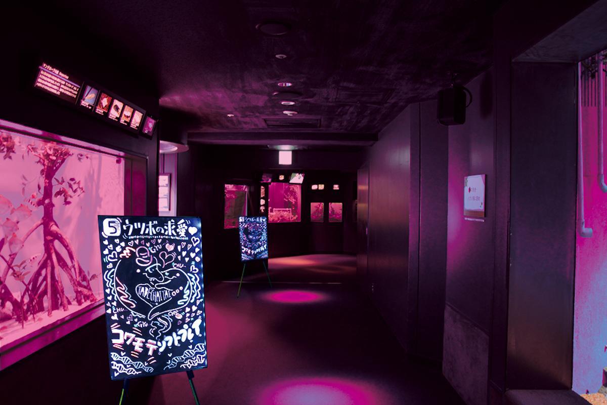 夜のサンシャイン水族館「もっと 性いっぱい展」